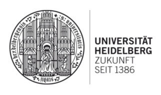 Website:  http://www.uni-heidelberg.de/fakultaeten/chemgeo/pci/motzkus/workshop/  Date: August 8-9, 2014  Location: Heidelberg, Germany